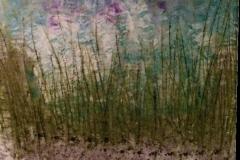 Grass - 90x70cm - Oil on canvas - 2004